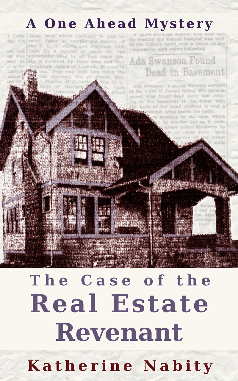 Cover for The Case of the Real Estate Revenant